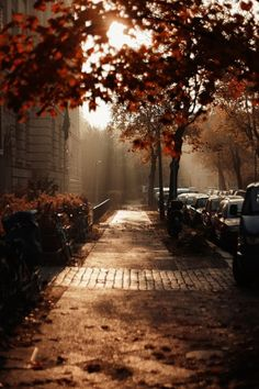 AUTUMN STREET....LOVE IT......wish we had seasons here in Florida!!