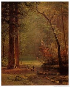Dogwood Art Print by Albert Bierstadt