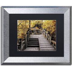 Trademark Fine Art Crossing Fall Canvas Art by Philippe Hugonnard, Black Matte, Silver Frame, Assorted