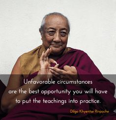 The best opportunity to put the teachings into practice ~ Dilgo Khyentse… Buddhist Wisdom, Buddhist Teachings, Buddhist Quotes, Buddha Buddhism, Tibetan Buddhism, Wisdom Quotes, Words Quotes, Life Quotes, Sayings