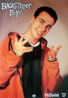 BACKSTREET BOYS - Poster - 12 - Howie D - 1996