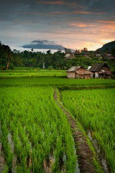 Sidemen, Bali Sunrise by EdBob, via Flickr