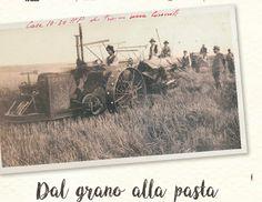 """Ai nastri di partenza la 4^ edizione di """"Libando, viaggiare mangiando"""", il festival del cibo di strada di Foggia"""