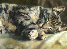 Sleeping Tabby Cat - by Dianne Woods