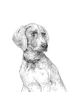 Custom Dog Pet Portrait / Custom Illustration / Original Ink