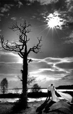 #bride #groom #wedding # weddings #photographer #camera #ireland #lurgan #northernireland #newry #belfast #mcstudios #professional #flowers #cake #ring #weddingring #veil #tiara #dress #suit #tuxedo #bridesmaids