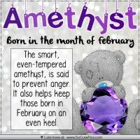 Amethyst-Feb ♡ Tatty Teddy tjn