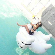 진백조  .  #히믈내요슈퍼파월  #제주도 #애월 #루스톤빌라앤호텔 #루스톤 #lustonhotel #jeju #regram #summer #swiming #여행스타그램 #백조 #백조튜브 #아우라제이 #auraj #진재영