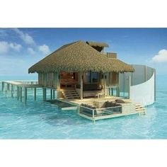 would die to be here!