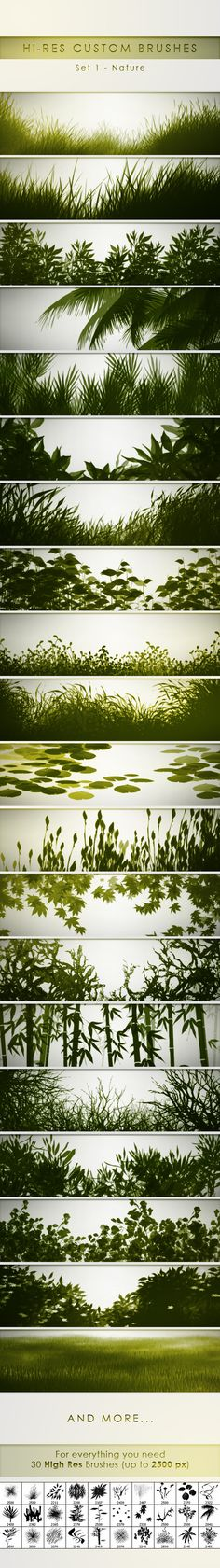 30 Hi-Res Custom Brushes - Nature - Flourishes Brushes