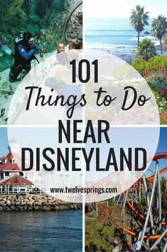 101 Things to Do Nea