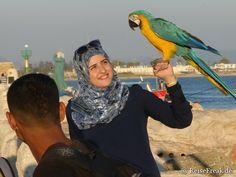 Israel 2015, Teil 2: Von Tel Aviv nach Akko – immer am Mittelmeer entlang   ReiseFreaks ReiseBlog