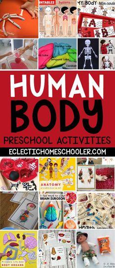 Human Body Preschool Activities - Eclectic Homeschooler