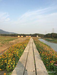Ningbo Sun Lake