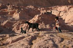 #Sinai #nomad #bedouin culture