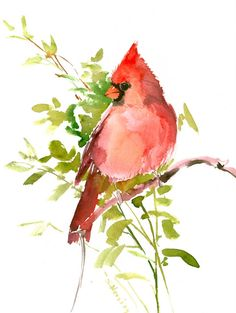 Red Cardinal, 12 X 9 in, original watercolor painting by ORIGINALONLY on Etsy