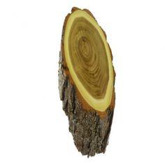 Akazie Natur Trophäenschilder für Rehbock und Gams ca. 23x13 cm, sind aus abgelagertem Holz gefertigt und somit garantiert rissfrei.Auf der Rückseite der Trophäenschilder kann ein Kieferfach und eine Aufhängevorrichtung eingefräst werden.Bitte wählen ob mit oder ohne Kieferfach. Coconut, Fruit, You're Welcome, Shop Signs, Nature, Wood, The Fruit