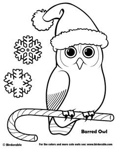 Birdorable Barred Owl Christmas Coloring Page