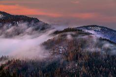 Fog by Martin Sprušanský