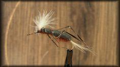 MJ's Grasshopper (MJ 701 F)