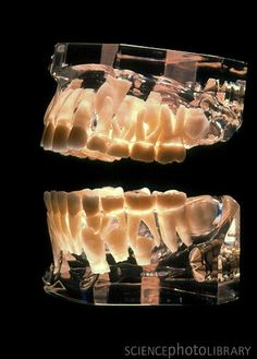 Beautiful #Orthodontics