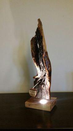 Driftwood Lamp / olivewood