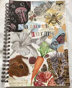 A Level Art Sketchbook, Sketchbook Layout, Arte Sketchbook, Sketchbook Pages, Sketchbook Ideas, Art Journal Inspiration, Art Inspo, Pretty Art, Cute Art