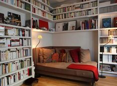 Breathtaking Home Library