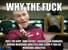 Cos the government know that cannabis cures cancer,  that's why!!!! #freeyourmind