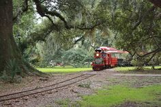 If you're looking for an awesome way to spend an evening with family or friends, this ride is it! This Magical Trolley Ride In New Orleans Is Magical