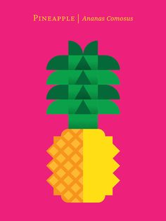 pineapple > Fruit by Christopher Dina, via Behance