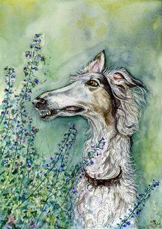 Jagd nach Bienen - Barsoi Hound Dog Print - 5 x 7 Zoll