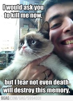 grumpy cat...I'm sure my cat feels this way when I smother him lol!