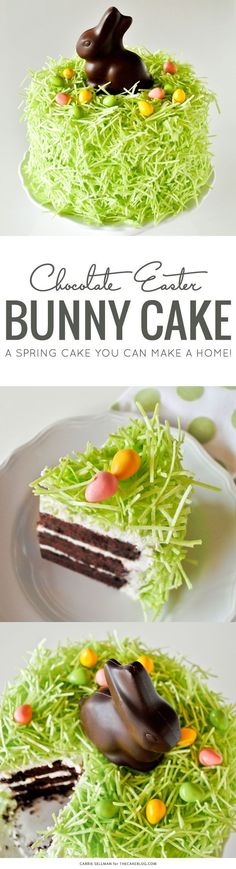 Learn how to make this simple Easter cake. Fluffy green grass topped with a chocolate Easter bunny and candy eggs. An Easter cake tutorial by Carrie Sellman.