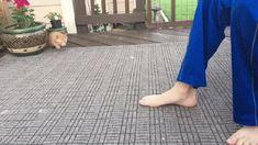 Kitten Attacks Foot