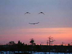 Smile in the sky ;-)