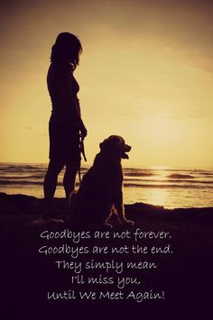 Until we meet again. Good thing all dogs go to Heaven :) Love My Dog, Puppy Love, Goodbyes Are Not Forever, Animals And Pets, Cute Animals, Pet Loss Grief, Dog Loss Poem, Dog Poems, Pet Remembrance