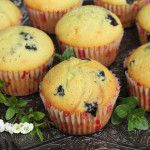 Dessert Recipes Archives - Page 39 of 77 - Recipe Patch Sweets Recipes, Muffin Recipes, No Bake Desserts, Buttermilk Cookies, Recipe Patch, Blue Berry Muffins, Quick Bread, Food To Make, Blueberry