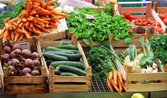 Summer's Best Farmers Markets in and around Clearwater