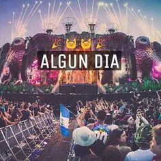 Electro Music, Dj Music, Music Love, Festival Photography, Dance Photography, Avicii, Tomorrowland Festival, Wallpaper World, Krewella