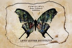Love Letter Butterfly by Ayako Yoshimoto(吉本彩子 aka 彩櫻恋 Aya Sacuraco)2011 @ Ryomon Coffeestand Album Covers, Art Work, Moose Art, Lettering, Animals, Wings, Butterflies, Artwork, Work Of Art