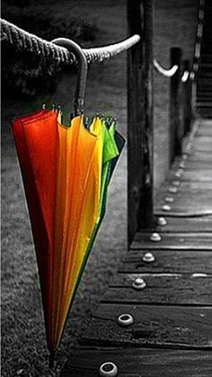 Black & White + Color ,Umbrella , After the Rain