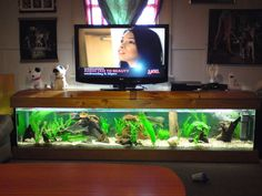 Aquarium Tv Stand Cool Home Ideas Fish