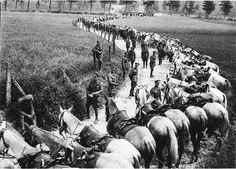 Royal Scots Greys (2nd Dragoons) stretched out alongside road in France during WWI