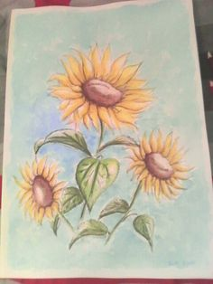 Sunflowers,  graphite and watercolor on watercolor paper