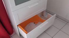 Meuble litière pour chat - Bidouilles IKEA