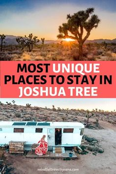 Where to Stay in Joshua Tree National Park? Here you have the best places to stay in Joshua Tree, from unique hotels, camping, to the best Glampling in Joshua Tree. Campgrounds in and around Joshua Tree | Joshua Tree Airbnb | California Travel / US National Park / Things to do in Joshua Tree / Joshua Tree Campgrounds / Joshua Tree Rentals I houses for rent Joshua Tree National Park I Joshua Tree weekend getaway I Joshua tree lodging #JoshuaTree #NationalParks #CaliforniaTravel #USATravel Affordable Honeymoon, Honeymoon Hotels, Best Honeymoon, Honeymoon Destinations, Joshua Tree Hotel, Joshua Tree Airbnb, National Park Camping, Joshua Tree National Park, National Parks