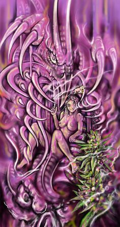 Dragon weed