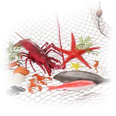 Seafood Fish Net Set | Peeks