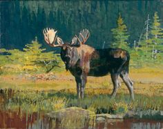 In addition to many field studies for each painting, Kuhn was not opposed to… Wildlife Paintings, Wildlife Art, Animal Paintings, Moose Pictures, Hunting Art, Sports Art, Western Art, Female Art, Cool Art